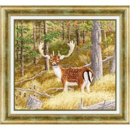 Набор для вышивки крестом Золотое руно ДЖ-045 Лесной олень
