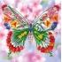Наборы для вышивки бисером - Бабочки