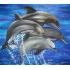 Вышивка крестом дельфины