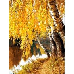 Авторский набор для вышивки бисером - Токарева А. - 38-2806-НЗ Золотая береза