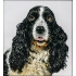 Наборы для вышивки бисером - Собаки