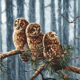Owls family / Совиная семья - LETISTITCH - набор для вышивки крестом