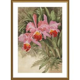 Тропическая орхидея - Новая Слобода - набор вышивки крестом