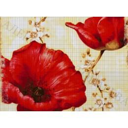 Авторский набор для вышивки бисером - Токарева А. - МАК И ВИШНЯ 36-2596-НМ