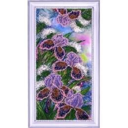 Набор для вышивки бисером - Butterfly - №224 Сияющие ирисы