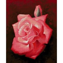 Авторский набор для вышивки бисером - Токарева А. - Алая роза 36-2622-НА