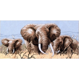 Африканские слоны - Classic Design - набор вышивки крестом