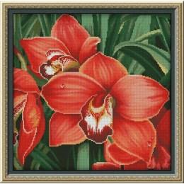 Набор для вышивки крестом - Фантазия ТМ - 400/47 Красная орхидея