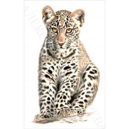 Авторский набор для вышивки бисером - Токарева А. - Маленький хищник 35-2680-НМЧ