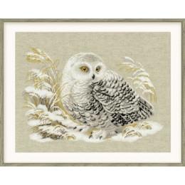 Набор для вышивки крестом - РИОЛИС - 1241 Белая сова