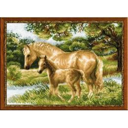 Лошадь с жеребёнком - РИОЛИС - набор для вышивки крестом