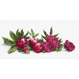 Набор для вышивки крестом - Luca-S - Пионы и красные яблоки