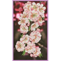 Набор для вышивки бисером - Картины бисером - Ветка сакуры