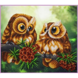 Cовушки - Картины бисером - набор для вышивки бисером