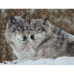 Набор для вышивки крестом - Luca-S - Два волка В2291
