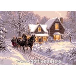 Мираж зимы - Goblen Set - вышивка гобеленовым швом