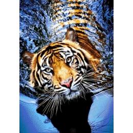 Авторский набор для вышивки бисером - Токарева А. - Тигр в реке 46-2944-НТ