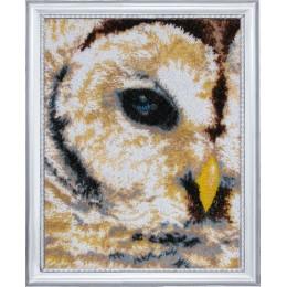 Набор для вышивки бисером - Butterfly - №531 Взгляд совы