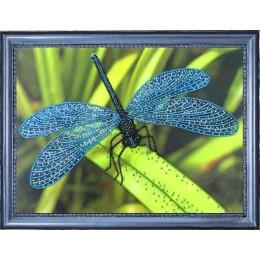 Набор для вышивки бисером - Butterfly - №105 Стрекоза