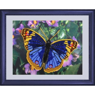 Бабочка - Butterfly - набор вышивки бисером