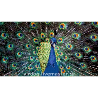 Жар-птица - Токарева А. - авторский набор вышивки бисером