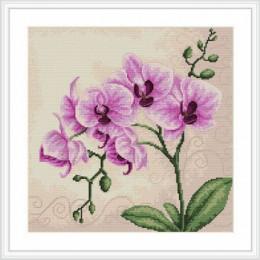 Набор для вышивки крестом - Luca-S - B2227 Орхидея