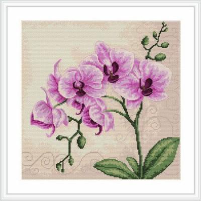 Орхидея - Luca-S - набор для вышивки крестом