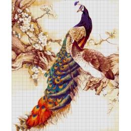 Авторский набор для вышивки бисером - Токарева А. - Павлин 37-3445-НП