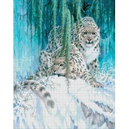 Авторский набор для вышивки бисером - Токарева А. - Снежные барсы 36-5092-НС